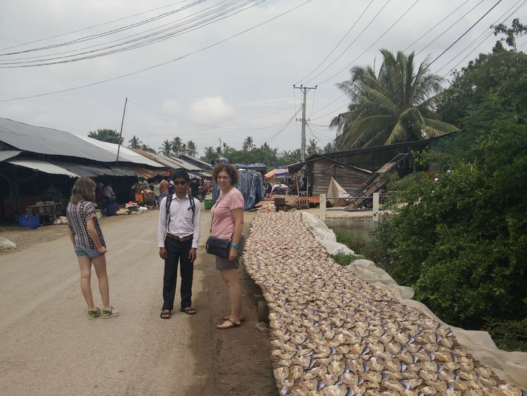 Vismarkt bij Battambang