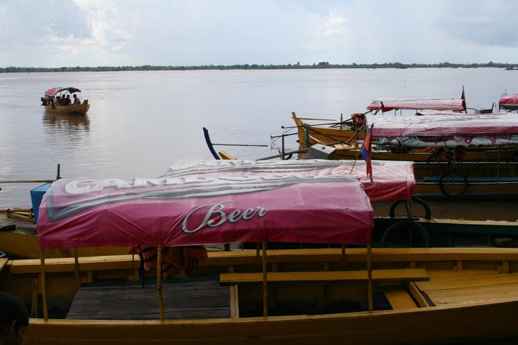 Irrawaddy dolfijnen spotten bij Kratie