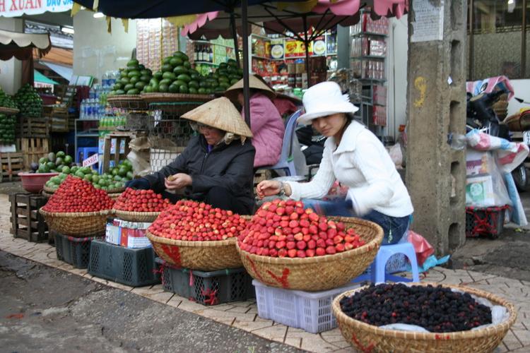 Aardbeien te koop